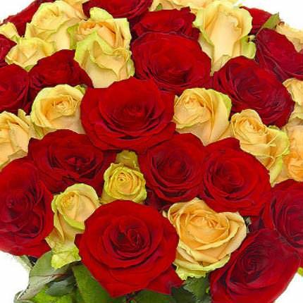 51 красная и кремовая роза - заказать с доставкой