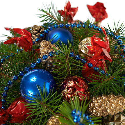 "Fir tree ""Christmas Night"" - delivery in Ukraine"