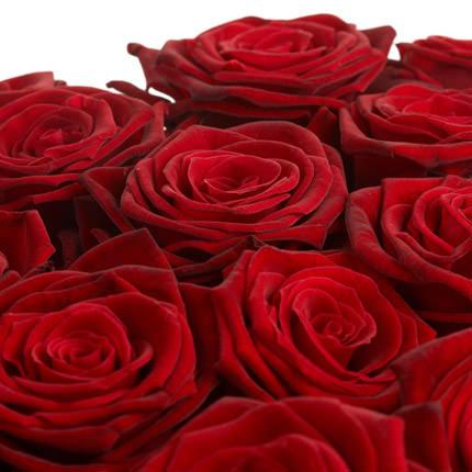 Роза красная (поштучно) - заказать с доставкой