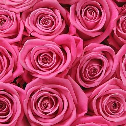 Роза розовая (поштучно) - заказать с доставкой