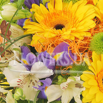 Mixed bouquet of flowers - order with delivery