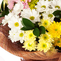 "Bouquet of chrysanthemums ""Melody"" - delivery in Ukraine"