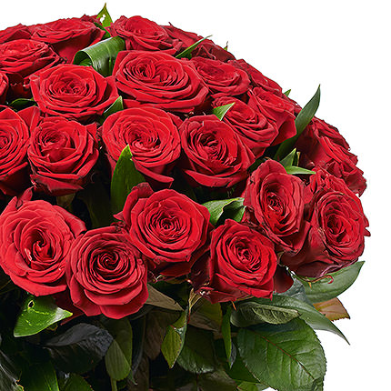 49 red roses - delivery in Ukraine