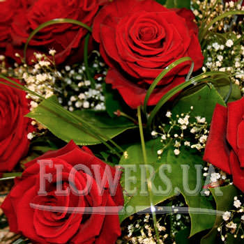 "Bouquet ""The Proposal"" - order with delivery"