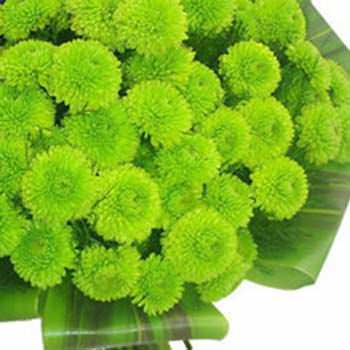 Весни цвітіння - доставка по Україні