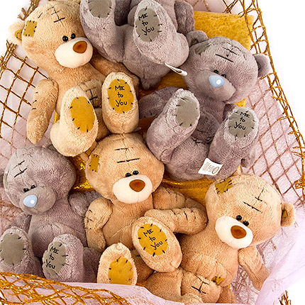 "Bouquet of toys ""Сubs"" - order with delivery"