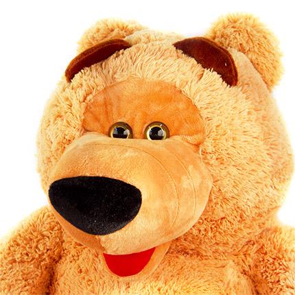 Великий ведмедик - замовити з доставкою
