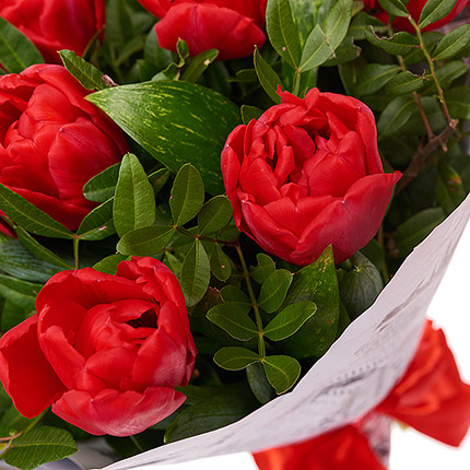 11 red tulips - order with delivery