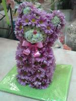 Цветочный котенок