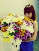 51 разноцветная хризантема