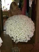 101 white daisy chrysanthemums