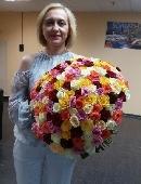 151 різнокольорова троянда
