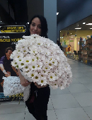 51 white chrysanthemums