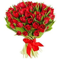 51 червоний тюльпан