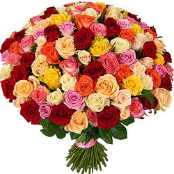 101 multi-colored roses