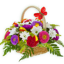 "Basket ""Mix of asters"""