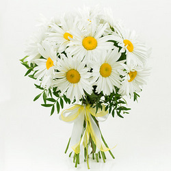 "Bouquet ""15 sunny daisies"""