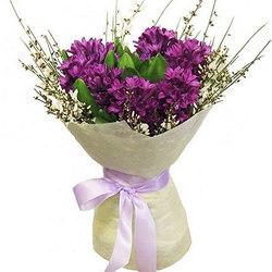 9 bright hyacinths