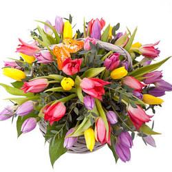 """Корзина """"51 разноцветный тюльпан"""""""