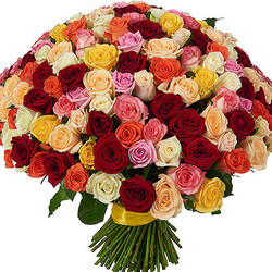 151 multi-colored roses