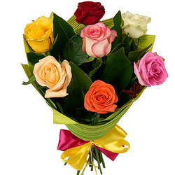 7 multicolored roses