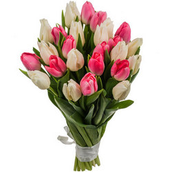"Bouquet of tulips ""Tenderness"""