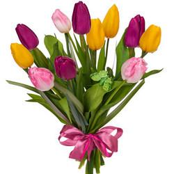 11 різнокольорових тюльпанів