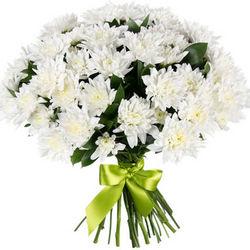 11 веток белой хризантемы