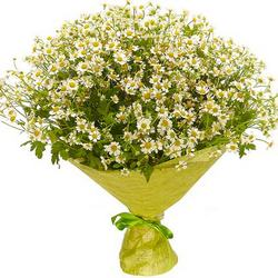 "Bouquet ""Field daisies"" (large)"
