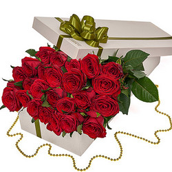 "Flowers in a box ""25 red roses"""