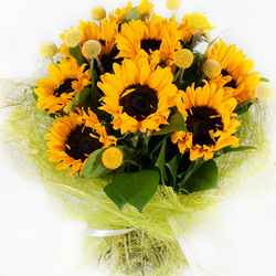 9 bright sunflowers