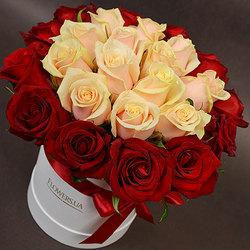 """Flowers in a box """"Prestige!"""""""