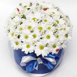 """Цветы в коробке """"Гадание на любовь"""""""