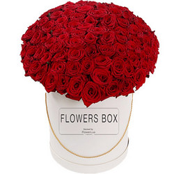 "Flowers in a box ""151 red roses"""