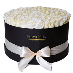 "Flowers in a box ""101 white roses"""