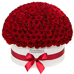 "Flowers in a white box ""151 red roses"""