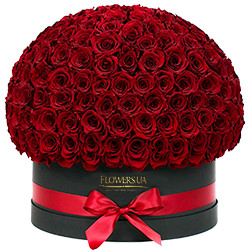 "Flowers in a black box ""151 red roses"""