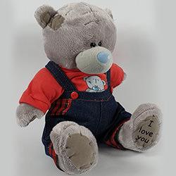 Ведмедик Тедді (хлопчик)