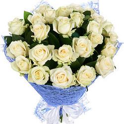 25 білих троянд