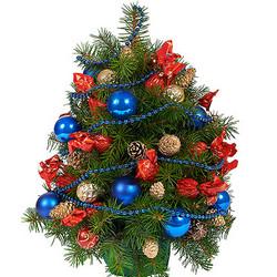 "Fir tree ""Christmas Night"""