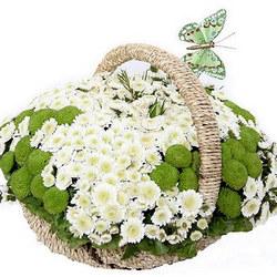 """Basket of сhrysanthemums """"Spring Meadow"""""""