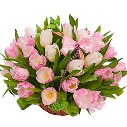 Basket of delicate tulips