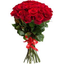 "Roses ""For darling"""