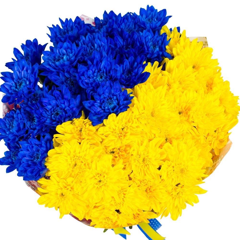 Українська тенісистка Еліна Світоліна стала третьою ракеткою світу - Цензор.НЕТ 8227